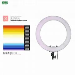 廠家批發綠季14寸LED環形主播補光燈 手機美顏瘦臉嫩膚直播環形燈