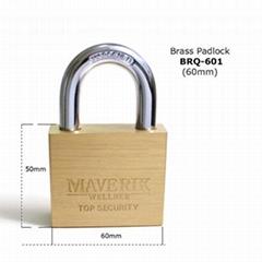 Hot sale 2018 BRQ-601 luxury & elegant brass padlock made in China