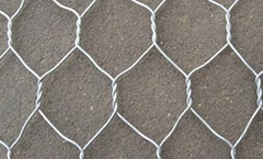 Galvanized /PVC Coated H