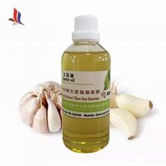 Pure Natural Garlic Oil Manufacturer Supply