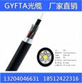 GYFTA光缆机房布线安防监控架空穿管导引光缆单模多模4-144芯定 1