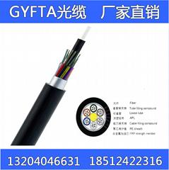 GYFTA光缆机房布线安防监控架空穿管导引光缆单模多模4-144芯定