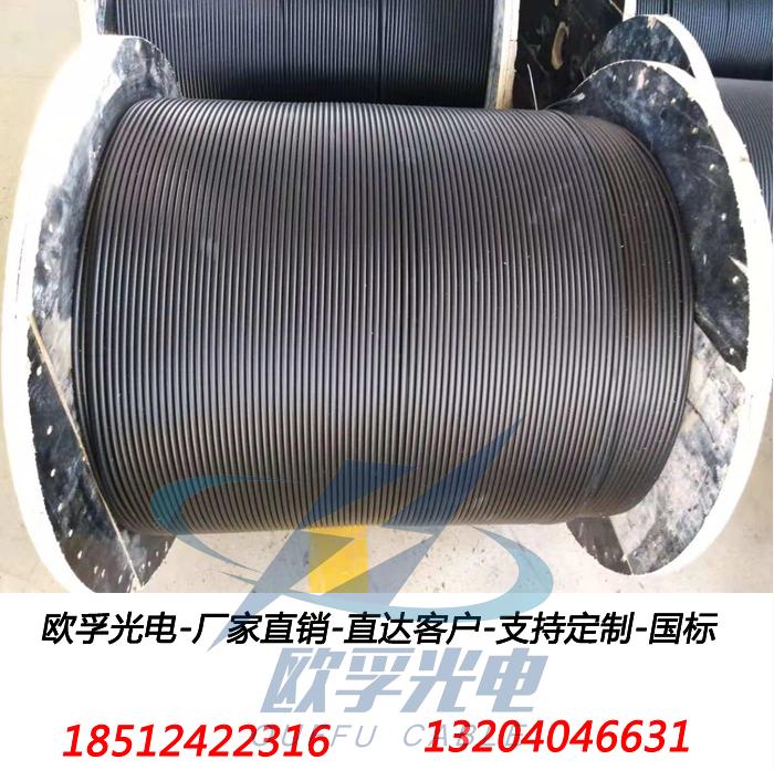 GYFTA光缆机房布线安防监控架空穿管导引光缆单模多模4-144芯定 2