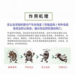 苏云金芽孢杆菌BT菌绿色防控病虫害农业生物种植翅目科防治