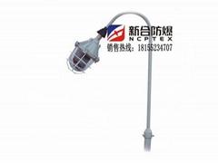 發電廠專用新合防爆平臺燈可定製