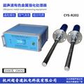 杭州CYS-R201G超声波金
