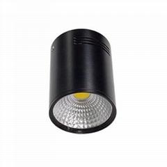 LED surface mounted downlight cob downlight spotlight