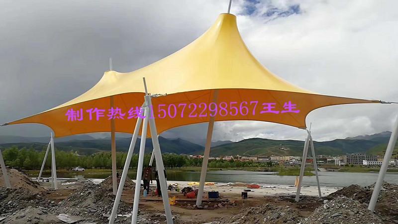 湖北襄阳膜结构停车棚厂家直销 4