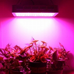 Hydroponic Full Spectrum 1500W Panel LED Grow Lights