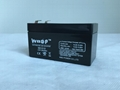 免维护铅酸蓄电池12V1.2AH 2