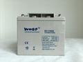 深循環蓄電池12V40AH
