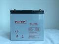 膠體蓄電池12V50AH