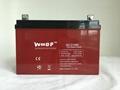 免维护铅酸蓄电池12V100A