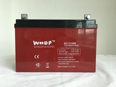 免维护铅酸蓄电池12V100AH