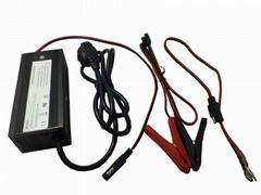 Factory lead acid/gel batteries 72v 2A battery charger