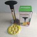 pineapple corer and slicer amazon best