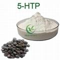 100% Pure 98% griffonia simplicifolia