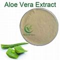 High Quality Aloe Vera Extract Aloe