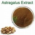 Astragalus root extract cycloastragenol