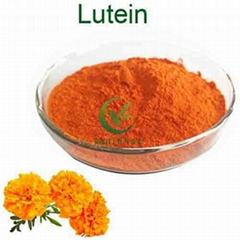 Factory Supply Marigold Extract Lutein price