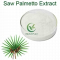 ISO Certified Factory Supply Halal 25% 45% Fatty Acid Saw Palmetto Extract 1