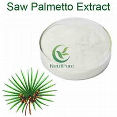 ISO Certified Factory Supply Halal 25% 45% Fatty Acid Saw Palmetto Extract