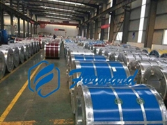 Mr Grade SPTE ETP Tinplate Sheet Coil for Canned Food
