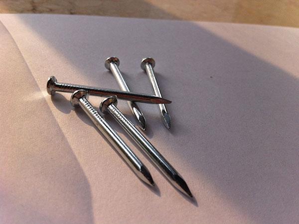 Polished Common Iron Nail 4
