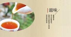 DaHong Pao tea bag