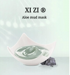 Aloe Mud Mask