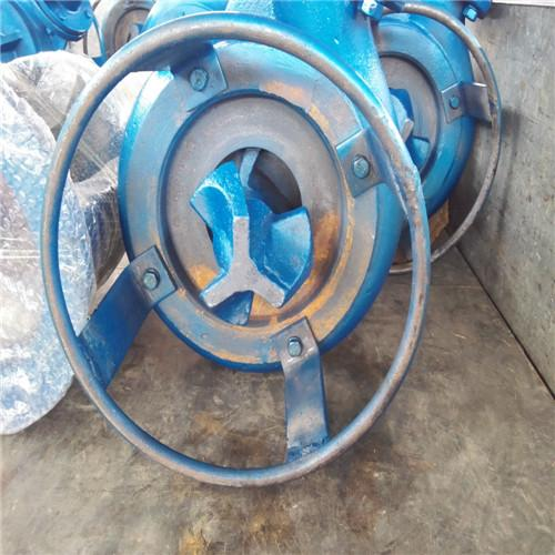 Vertical submerged stirring mud pump 1