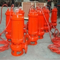 All CAST (high temperature resistant) stainless steel submersible sewage pump 2