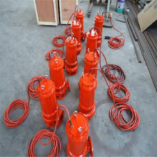 全铸造(耐高温)不锈钢潜水排污泵 3