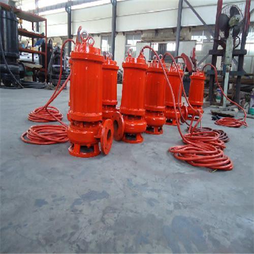 全铸造(耐高温)不锈钢潜水排污泵 5