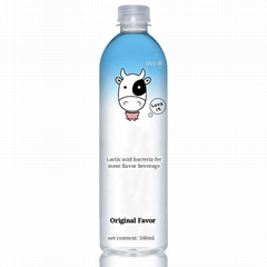 Lactic acid bacteria ferment flavor beverage