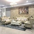 European style Leather sofa