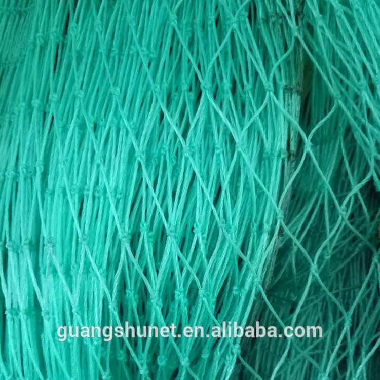 單層粘魚網 2