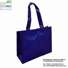 Eco friendly PP non woven blue laminated shopping bag