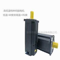 高低溫電機-50℃耐低溫伺服電機