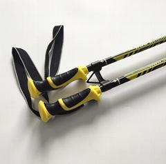 Alpine Ski Pole Downhill Ski Pole OEM factory