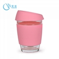 Fancy Glass Water Cup with Silicone