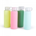 Wingenes Silicone Sleeve For Glass Water Bottle