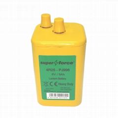 4R25 6V 9Ah Lantern Batteries (Hot Product - 1*)