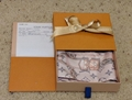 Louis Vuitton Silk Monogram Confidential