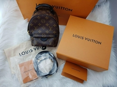 Louis Vuitton Palm Springs Mini Backpack Monogram LV backpacks handbag cheap
