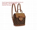 Louis Vuitton Backpack classic Dauphine bag PM Monogram Reverse canvas Shoulder