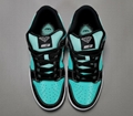 NK SB Dunk Low Pro QS Roswell Raygun