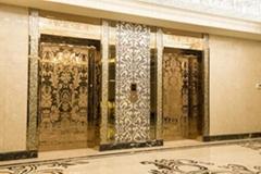 钛金蚀刻不锈钢电梯板