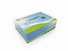 副溶血性弧菌核酸检测试剂盒恒温荧光法
