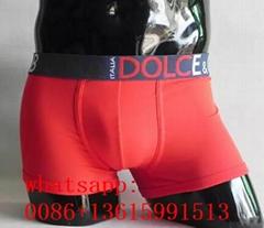 2019 top DG boxer D&G underwear DG underpant D&G knickers DG briefs